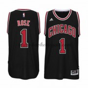 Maglie Basket NBA Chicago Bulls Uomo 2015-16 Derrick Rose 1# Alternate Swingman..