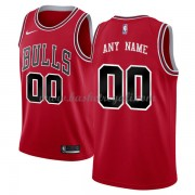Maglie NBA Chicago Bulls 2018 Canotte Icon Edition