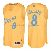 Magliette Basket Denver Nuggets 2016 Danilo Gallinari 8# NBA Natale Swingman..
