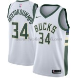 Maglie NBA Milwaukee Bucks 2018 Canotte Giannis Antetokounmpo 34# Association Edition