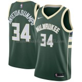 Maglie NBA Milwaukee Bucks 2018 Canotte Giannis Antetokounmpo 34# Icon Edition