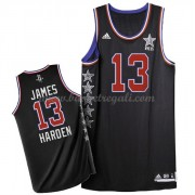 Divise Basket West All Star Game 2015 James Harden 13# NBA Swingman