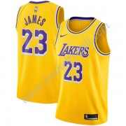 Maglie NBA Los Angeles Lakers 2019-20 LeBron James 23# Oro Icon Edition Canotte Swingman..